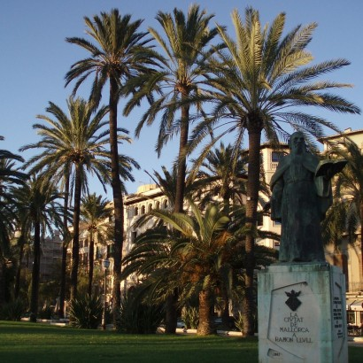 palm-trees-101353_960_720