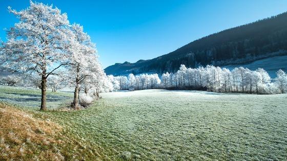 Colores Invernales